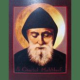Obraz na dreve: Svätý Charbel (40x30)