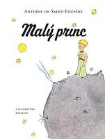 E-kniha: Malý princ